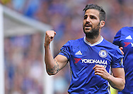 Cesc Fabregas of Chelsea celebrates scoring a penalty during the Barclays Premier League match against Leicester City at Stamford Bridge, London<br /> Picture by Andrew Timms/Focus Images Ltd +44 7917 236526<br /> 14/05/2016