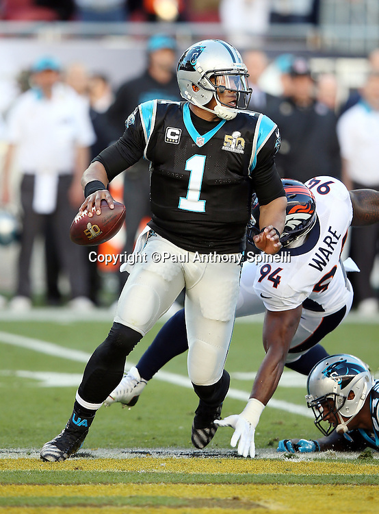 Carolina Panthers quarterback Cam Newton (1) is chased by Denver Broncos outside linebacker DeMarcus Ware (94) on a first quarter play that leads to a first down at the Panthers 45 yard line due to a defensive penalty during the NFL Super Bowl 50 football game against the Denver Broncos on Sunday, Feb. 7, 2016 in Santa Clara, Calif. The Broncos won the game 24-10. (©Paul Anthony Spinelli)