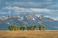 The Teton Range in morning light from Mormon Row, Grand Teton National Park Wyoming