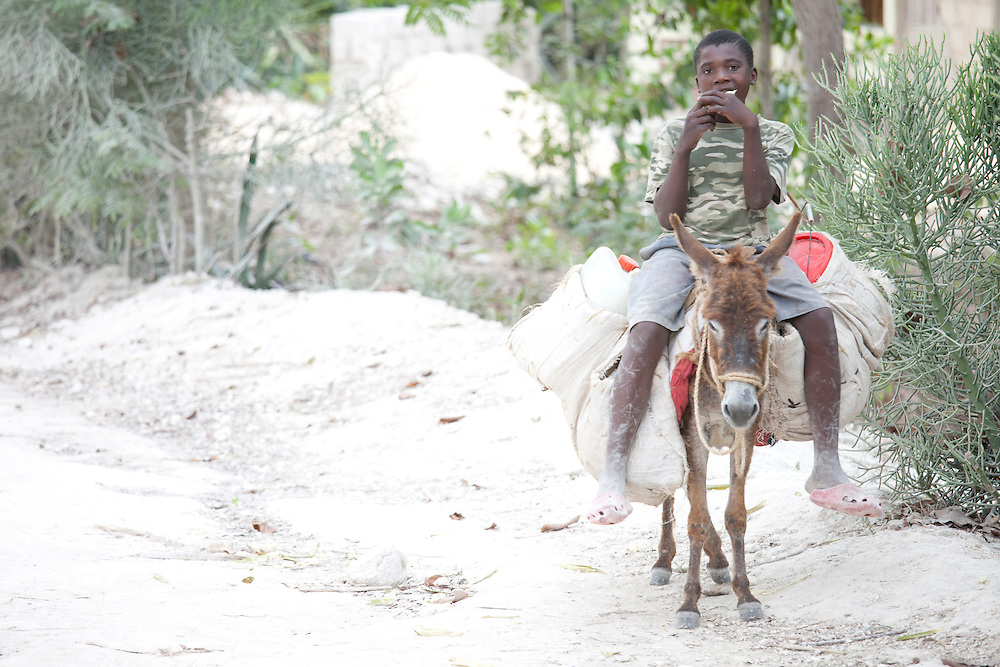 A boy eats on the back of a donkey on his way to fill buckets with water on Ile de la Gonave, Haiti