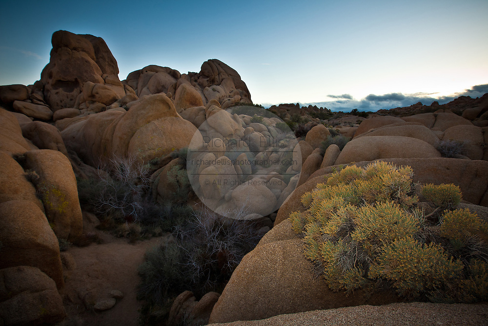 Jumbo Rock area at twilight at Joshua Tree National Park, Twentynine Palms, CA.