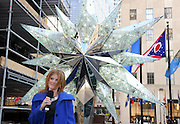 IN THIS IMAGE DISTRIBUTED FOR SWAROVSKI -  Jennifer Hinkle, of Swarovski, celebrates the10th anniversary of the Swarovski Star topping the 76-foot Rockefeller Center Christmas tree, Thursday, Nov. 14, 2013, in New York.  The Star, features 25,000 crystals and weighs 550 pounds, will sit atop the Rockefeller Center Christmas tree which will be lit on Dec. 4th.    (Diane Bondareff/Invision for Swarovski/AP Images)