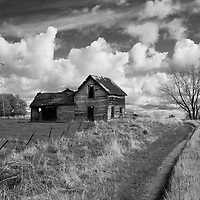 rural scene with old barn and farm track under cloudy sky in Rolette County USA