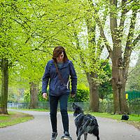 Dog problems - chasing skateboarder