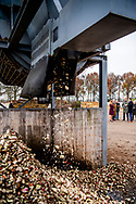 JOPPE - Koning Willem-Alexander en minister Carola Schouten (Landbouw, Natuur en Voedselkwaliteit) brengen een bezoek aan melkveehouderijbedrijf Groot Steinfort. Het bezoek is onderdeel van een reeks bezoeken van de koning met ministers en staatssecretarissen. ANP ROYAL IMAGES ROBIN UTRECHT **NETHERLANDS ONLY**