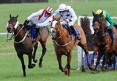 Thurles Racecourse - 07 Feb 2019