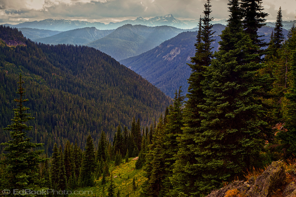 Dewey Creek valley and Ohanapecosh River Valley viewed from the Pacific Crest Trail south of Chinook Pass in Mount Rainier National Park. Washington state, USA