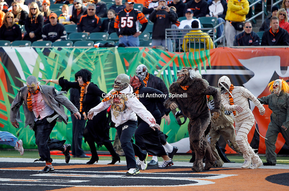 Participants in the halftime show wear Halloween costumes during the Cincinnati Bengals NFL week 8 football game against the Miami Dolphins on Sunday, October 31, 2010 in Cincinnati, Ohio. The Dolphins won the game 22-14. (©Paul Anthony Spinelli)