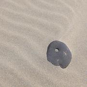 Moving Stone In The Sand - Cannon Beach - Oregon Coast