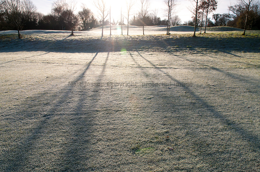 Long shadows on golf course