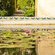 Spain gardens with relection and lily pads.<br />