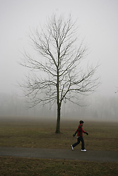 Seneca Park feature with fog, Tuesday, Jan. 19, 2010 at Seneca Park  in Louisville.