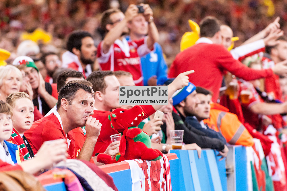 That TMO moment - Welsh fans have conflicting views on the try that wasn't. Action from the Wales & Fiji game in Pool A of the 2015 Rugby World Cup at Milennium Stadium in Cardiff, 1 October 2015. (c) Paul J Roberts / Sportpix.org.uk
