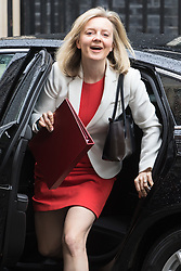 Downing Street, London, June 14th 2016. Environment Food and Rural Affairs Secretary Elizabeth Truss arrives at 10 Downing Street to attend the weekly cabinet meeting.