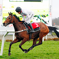 Minella Forfitness and Barry Geraghty winning the 5.05 race