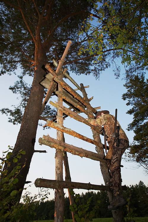 Hunter in an open hunting tower at the forest edge at dusk. Leszczowate, Bieszczady region, Poland.
