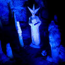 20081112: Gajino kraljestvo v Postojnski jami