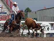 Team Ropers Britt Willams and Caleb Twisselman rope there steer in a time of 8.8, 27 July 2007, Cheyenne Frontier Days
