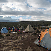 Tents in Shira 1 Camp, with Mt Kilimanjaro's peak in the distance at left.