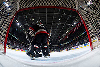 KELOWNA, CANADA - FEBRUARY 8: Kelowna Minor Hockey Tim Bits play during intermission at the Kelowna Rockets against the Prince George Cougars on February 8, 2019 at Prospera Place in Kelowna, British Columbia, Canada.  (Photo by Marissa Baecker/Shoot the Breeze)