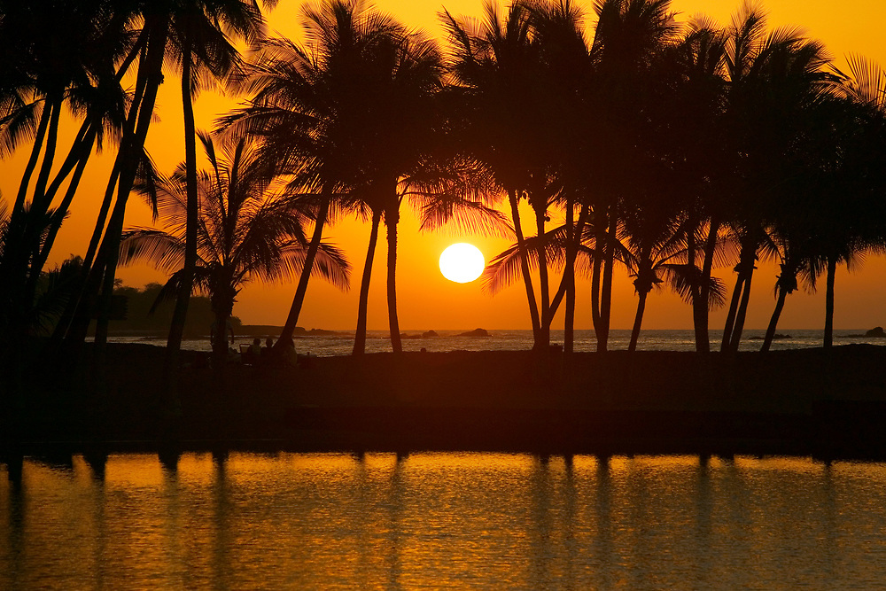 The setting sun creates a glowing canvas for silhouetted coconut palms swaying in the gentle sea breeze, as daylight surrenders to nightfall at Anaeho'omalu Bay on the Big Island.