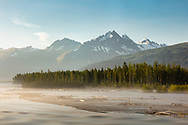 Fog at dawn along the Lowe River near Valdez in Southcentral Alaska. Summer.