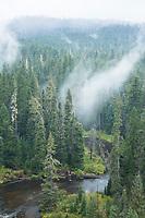 Rogue River, Oregon.