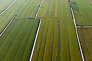 Nederland, Utrecht, Bunnik 10-01-2011;.Weilanden omgeven door sloten met sneeuw. Fields surrounded by snowy ditches..luchtfoto (toeslag), aerial photo (additional fee required).foto/photo Siebe Swart