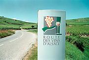 Frankrijk, Elzas, 7-7-2002Wijnbouw, druiventeelt, wijnstok, economie, wijnproductie, toerisme, wijnrouteFoto: Flip Franssen/Hollandse Hoogte