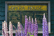 Opera House in Stonington, Maine with lupines