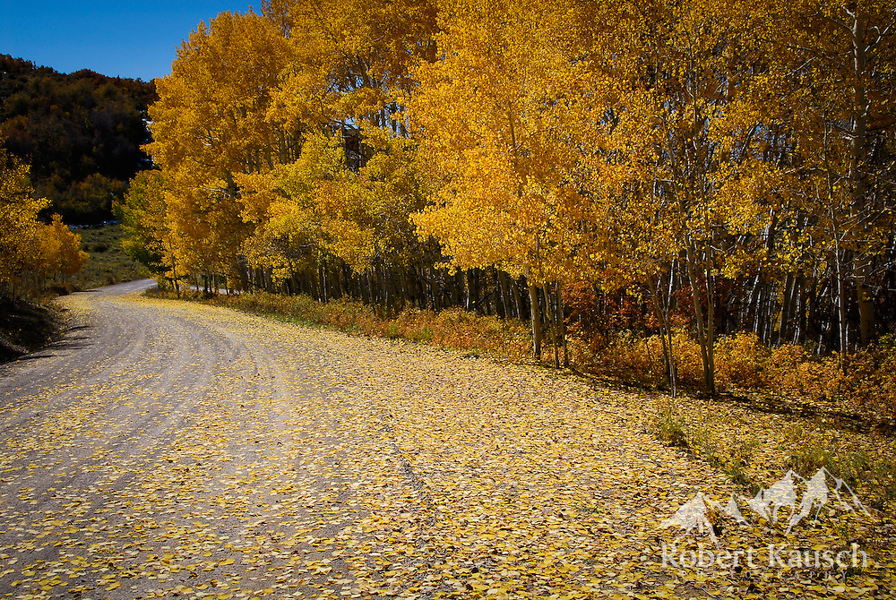 "Nice fall color shot by Last Dollar Road... note the road as a ""leading line""."
