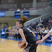 Women's Basketball: Bowdoin College Polar Bears vs. Wartburg College Knights