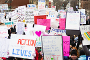 A vast collection of protest signs fill the area around the Wisconsin State Capitol during the March for our Lives protest in Madison, Wisconsin, Saturday, March 24, 2018.