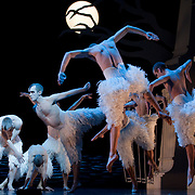 Milano : Swan Lake at Teatro Arcimboldi  Director and Coreographer Matthew Bourne Set Design and Costume Design Lez Brotherston Lighting Design Rick Fisher .LONDON, ENGLAND - DECEMBER 15: Members of the cast perform Matthew Bourne's 'Swan Lake' at Saddlers Wells Theatre on December 15, 2009 in London, England. This production was first presented in 1995, and is Matthew Bourne's modern interpretation of Swan Lake featuring an all male cast. ...***Agreed Fee's Apply To All Image Use***.Marco Secchi /Xianpix. tel +44 (0) 771 7298571. e-mail ms@msecchi.com .www.marcosecchi.com