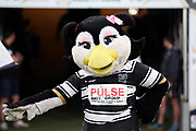 The Hull FC Airlie Bird Mascot during the Betfred Super League match between Hull FC and Leeds Rhinos at Kingston Communications Stadium, Hull, United Kingdom on 19 April 2018. Picture by Mick Atkins.