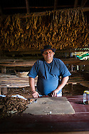 Tobacco farmer and cigar producer in Viñales, Cuba