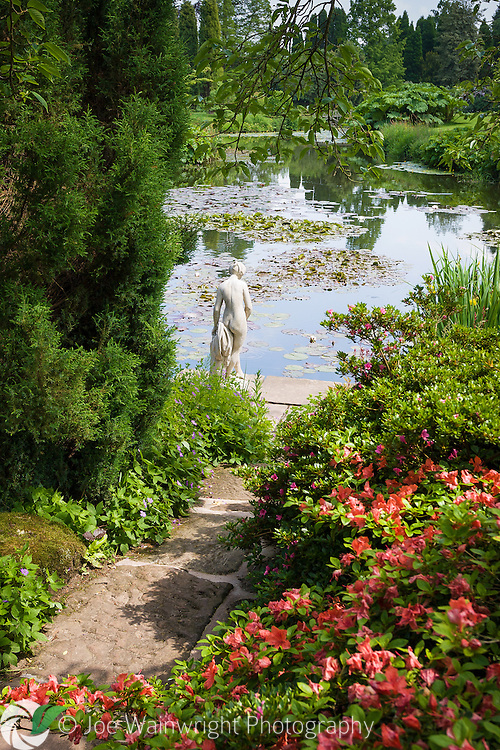 Azaleas in flower, as a small statue looks out across the lake in the Temple Garden at Cholmondeley Castle Gardens, Cheshire.
