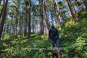 A hiker walks through a forest on Sucia Island, Washington state.