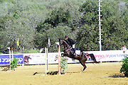 Israel, Alonim, Horse jumping competition