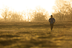 © Licensed to London News Pictures.24/01/2015. London. A runner at Sunrise in Knole Park London. Whilst cold, today will be bright and sunny in the South East. Photo credit :IAN SCHOFIELD/LNP