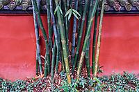 Chine, Province du Sichuan, Chengdu, temple Wuhou  // China, Sichuan province, Chengdu, Wuhou Temple