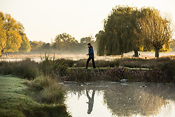© Licensed to London News Pictures. 30/10/2017. London, UK. A walker seen through the mist at sunrise in Bushy Park where plummeting overnight temperatures caused the first frost of the winter season. Photo credit: Rob Pinney/LNP