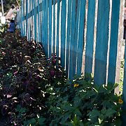 Bolivia. Loma Suarez. The tide line created by the floods of 2008 is clearly seen on the garden fence in Loma Suarez.