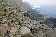 Fog and basalt rocks along the Bay of Fundy <br /> Brier Island<br /> Nova Scotia<br /> Canada