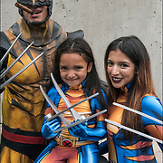 Cosplayers husband, wife and young daughter in their Wolverine  costumes.<br /> <br /> Wolverine commonly known as Logan is a fictional character appearing in Marvel Comics.  Mostly association with the X-Men. He is a mutant who possesses animal-keen senses, enhanced physical capabilities, powerful regenerative ability known as a healing factor, and three retractable bone claws in each hand. Wolverine has been depicted variously as a member of the X-M<br /> <br /> Cosplay, a contraction of the words costume play, is a performance art in which participants called cosplayers wear costumes and fashion accessories to represent a specific character.<br /> <br /> Cosplayers often interact to create a subculture and a broader use of the term &quot;cosplay&quot; applies to any costumed role-playing in venues apart from the stage. Any entity that lends itself to dramatic interpretation may be taken up as a subject and it is not unusual to see genders switched. Favorite sources include manga and anime, comic books and cartoons, video games, and live-action films and television series.<br /> <br /> The New York Comic Con convention, is a celebration of comic books, graphic novels, sci-fi and video games, toys, movies and television. The convention brings together celebrities as well as fans of fantasy role playing, Comic-Con is the business of pop culture.