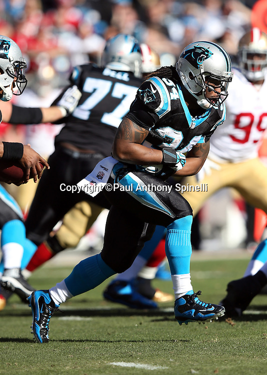 Carolina Panthers running back DeAngelo Williams (34) fakes a run during the NFC Divisional Playoff NFL football game against the San Francisco 49ers on Sunday, Jan. 12, 2014 in Charlotte, N.C. The 49ers won the game 23-10. ©Paul Anthony Spinelli