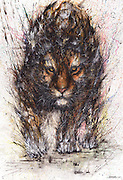 Splattered Ink Animal Portraits By Chinese Artist Hua Tunan<br /> <br /> Chinese-born paint-splatter and street artist Hua Tunan and his stunning new animal portraits. Using a unique combination of traditional Chinese painting and Western street art, his work has won acclaim around the world. <br /> <br /> Hua Tunan, real name Cheng Yingjie, was born in Born in 1991 in Foshan, Guangdong. He has his own studio in Foshan, China, and has worked with famous brands such as Louis Vuitton, Adidas, NIKE, Jaguar, Volvo, and Disney. His signature chaotic painting style can be created on canvases and wall-sized murals alike.<br /> Hua Tunan is presently holding his first solo exhibition at Chicago's Galerie F, <br /> © Hua Tunan/Exclusivepix Media