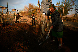 Ethnic Uighur farmers work on grape fields in Turpan, Xinjiang Uighur Autonomous Province, China, 17 November 2017. Uighurs, a Muslim ethnic minority group in China, make up about 40 per cent of the 21.8 million people in Xinjiang, a vast, ethnically divided region that borders Pakistan, Afghanistan, Kazakhstan, Kyrgyzstan and Mongolia. Other ethnic minorities living in here include the Han Chinese, Kyrgyz, Mongolian and Tajiks people. Xinjiang has long been subjected to separatists unrests and violent terrorist attacks blamed by authorities on Islamist extremism while human rights groups say Chinese repression on religious rights, culture and freedom of movement caused undue tensions. Life however goes on under the watchful eye of the government for the ethnic Uighurs living in the city of Urumqi and surrounding areas and the region is still considered an attractive tourist spot. A recent report by state media Xinhua news agency claims Xinjiang received more than 100 million tourists in 2017, 'the highest figure in its history'.