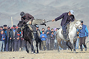 Two Kazakh riders struggle for control of a dead goat in a game of Kokpar also known as Bushkashi at the annual Eagle Hunting Festival, Bayan Olgi, Mongolia, Oct 2, 2004.  Kokpar requires a combination of strength, courage, and horsemanship skills.  This traditional game has come back since the Soviet withdrawal from the region.  The Kazakhs of Mongolia play one on one, with 10 men on each team.  When a rider loses his grip on the goat or falls off his horse he has to join the opposing team.  Eventually one team has all the riders on its side and is the winner.  Kokpar or Bushkashi is also played in a ruby style in other parts of Central Asia including Kazakhstan.  Hundreds of riders may line up on each side, and then mayhem prevails as they all rush to grab the goat.