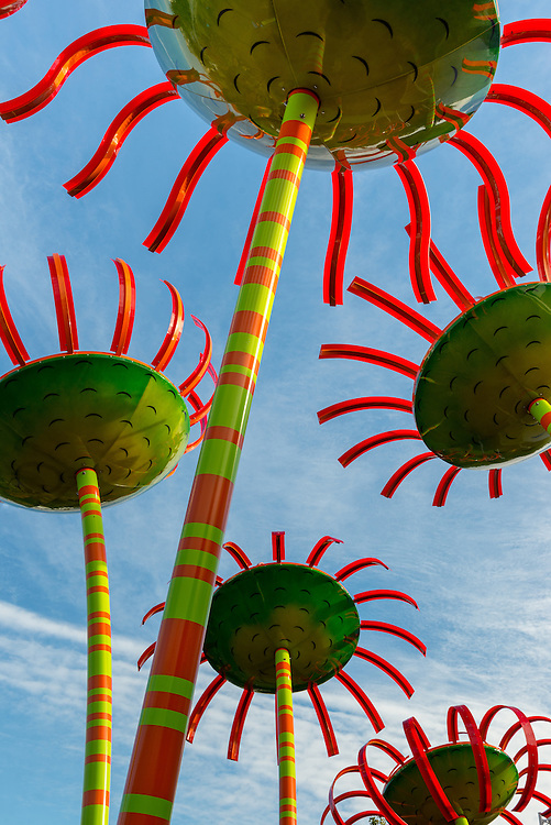 Flower sculptures at Seattle Center